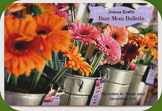 Subscribe- The Busy Mom Bulletin Newsletter