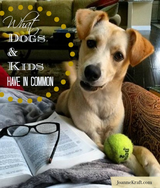 JoanneKraft.com What Dogs and Kids Have in Common