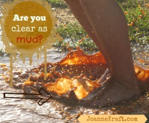 Are You Clear as Mud?