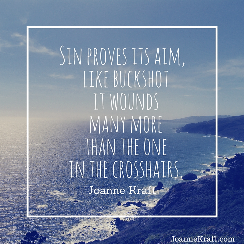 Sin proves its aim. Joanne Kraft.com