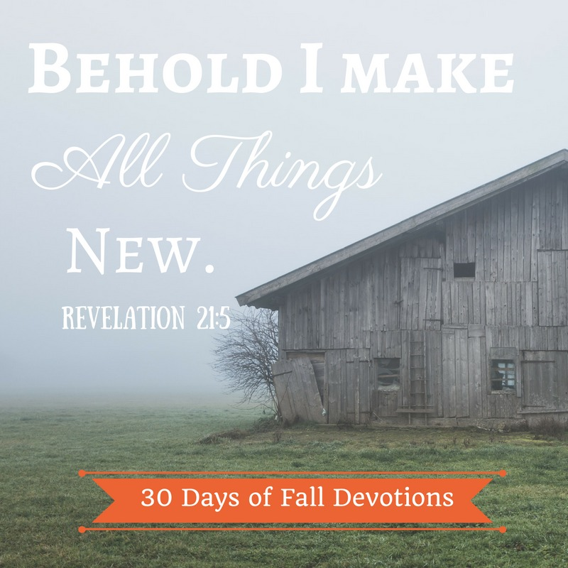 30-days-all-things-new